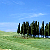 tuscan-2
